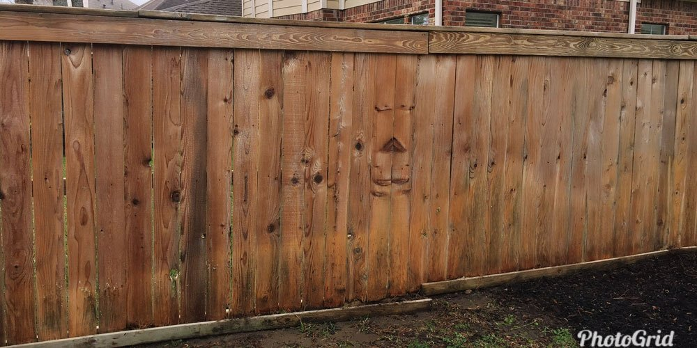 Fence After Washing