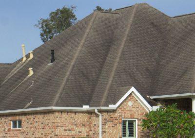 Roof With Dark Streaks